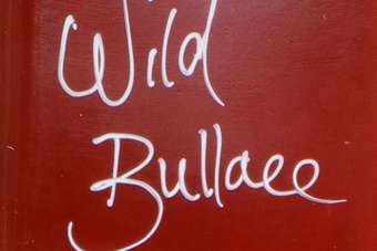 Click through to view Demijohns Wild Bullace Liqueur