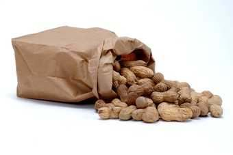 Trigon is one of the key importers and processors of nuts in the UK