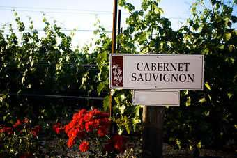 Cabernet Sauvignon was the second-most crushed grape in California