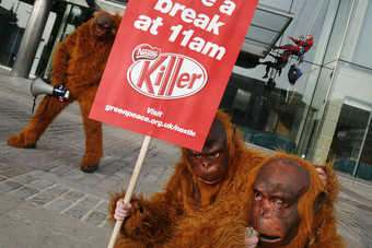 UK/GERMANY: Nestle faces protests over palm oil