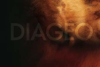 just The Preview - Diageo H1 and Q2
