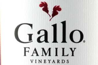 Click through to see the Gallo Family Vineyards Moscato ads, featuring Holly Valance