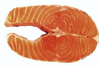 Salmon prices look positive for 2014
