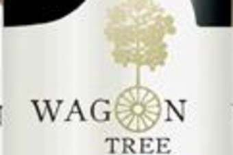 Treasury Wine Estates EMEAs Wagon Tree