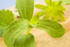 Comment - Soft Drinks & Water - Stevia Poised to Burst Obesity Bubble?