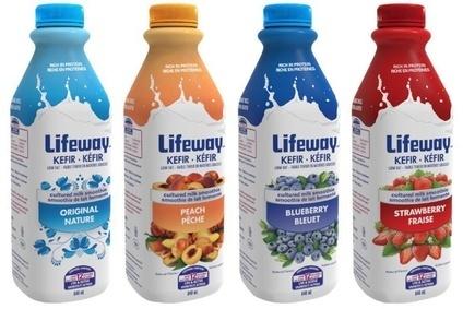 kefir drink. lifeway is expanding its range to mexico kefir drink k