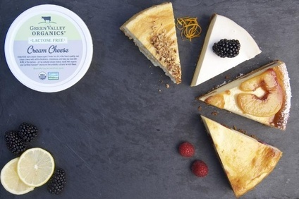 Green Valley Organics Launches Lactose Free Cream Cheese Food Industry News Just Food