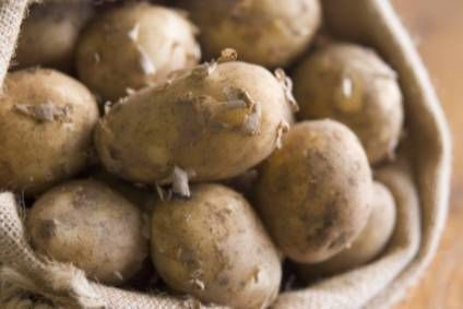 Pressure on potato prices weighed on Produce Investments profits in last financial year