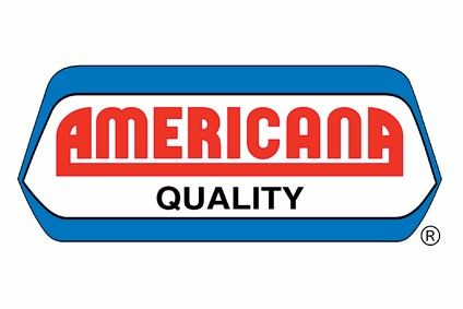 Americana stake sale falls through