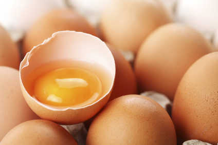 Fipronil contamination rocks Europe egg sector