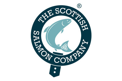 Scottish Salmon losses mount