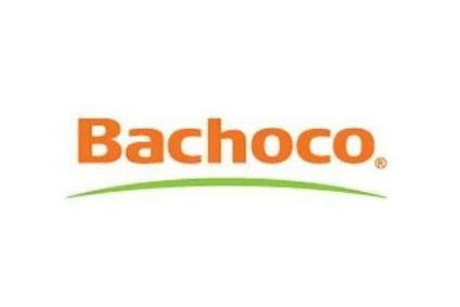 Bachoco sales rise but earnings squeezed