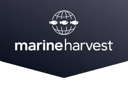 Marine Harvest has reported higher sales but lower EBIT for the year