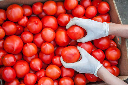 KEEN embraces better-for-you foods with stake in The Jersey Tomato Co.