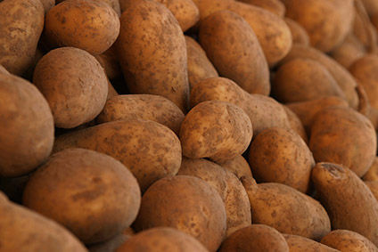 Potatoes - UK crop affected by extreme weather.
