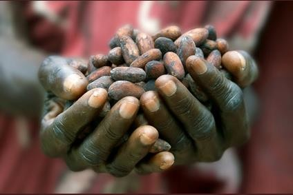 How do food companies ensure cocoa supply meets future demand - sustainably?