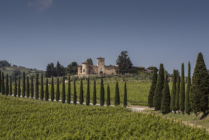 TWE previously only had limited distribution of its Castello di Gabbiano Italian wine portfolio in the UK