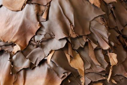 New platform to drive responsible leather sourcing