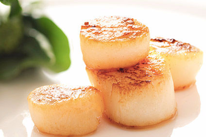 PTC Germany supplies products including seabass and scallops