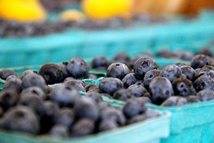 Hortifrut - the merger greatly increases its blueberry production capacity.