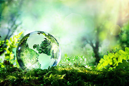 Consumer demand for environmental efforts reaches fever pitch - Consumer Trends