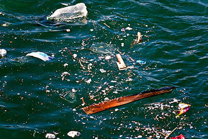 Ellen MacArthur Foundation forecasts there could be more plastics than fish in oceans by 2050
