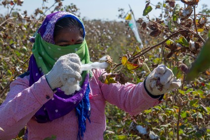 Primark expands sustainable cotton programme to Pakistan
