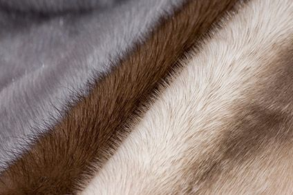UK retailers found selling real fur labelled as fake