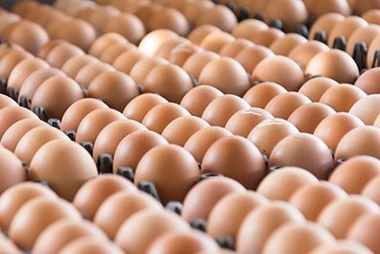 Fipronil eggs contamination crisis coming under control, says EU