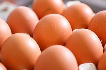 Eggs imported from Netherlands fell foul of tests