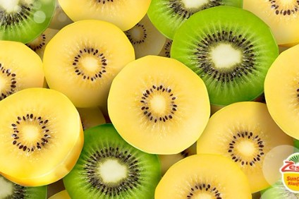zespri the kiwi fruit industry Based in mount maunganui, the heart of new zealand's kiwifruit industry, the  company has 120 growers of organic green and gold kiwifruit around new  zealand.