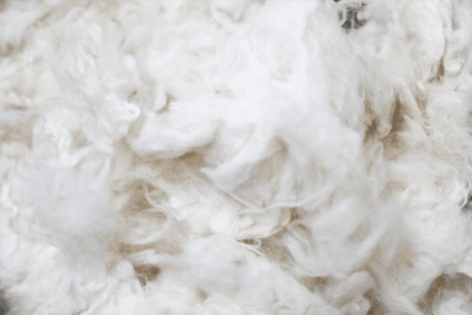 research into breakdown of wool fibres in seawater. Black Bedroom Furniture Sets. Home Design Ideas