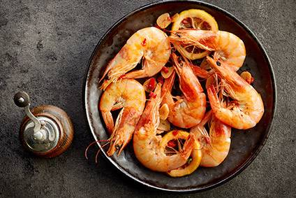 India shrimp exporters pointed to growth