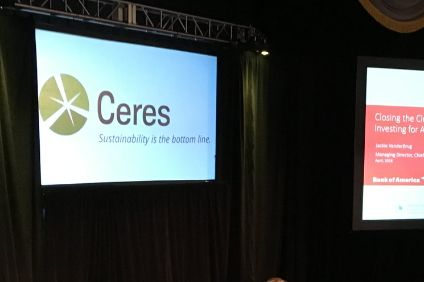 Ceres - report says food businesses are among those leading way on sustainability