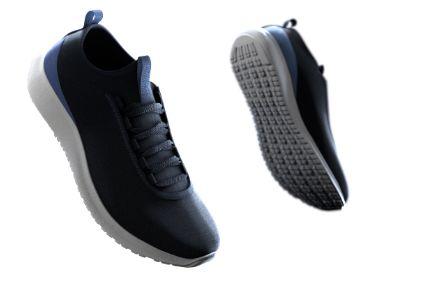 Gore-Tex 3D fit footwear insert