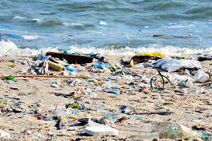 How important is the plastic crisis? More important than Brexit - Sustainability Spotlight