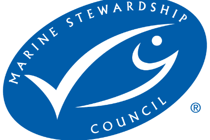 The MSC has launched its own Fisheries Standard Review