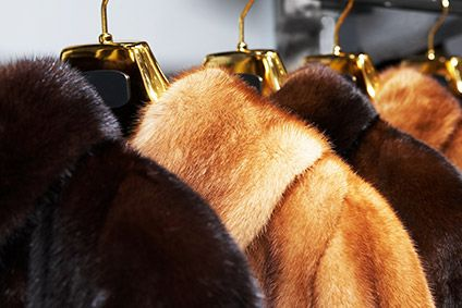 Boris Johnson urged to make UK the first country to ban fur sales
