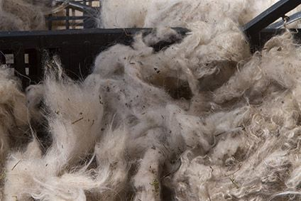 The business' sustainability promise includes using a yarn supplier accredited by the Good Cashmere Standard