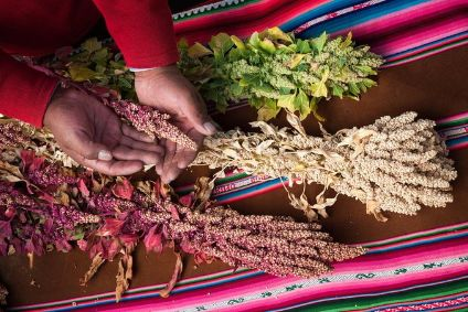 Ardent Mills acquires Andean Naturals quinoa operation in all-US deal