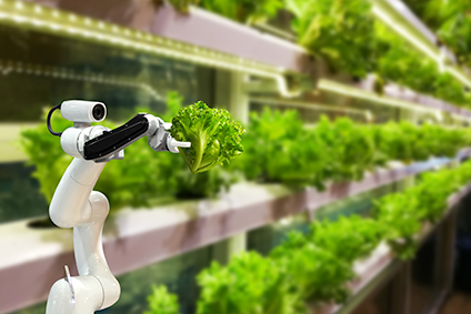 Machine dreams – the future of artificial intelligence in food and beverage operations