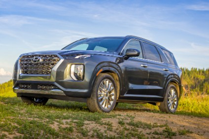 Recent Hyundai model launches include Palisade SUV