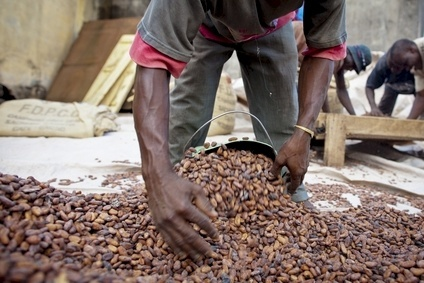 Sustainability Watch: Bill Guyton, World Cocoa Foundation