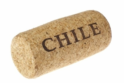 just the Facts – Chile's Wine Industry