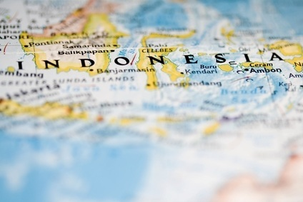 BRICs and beyond: Competition rises in Indonesias growing dairy sector