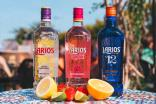 Beam Suntory rolls out Larios gin range to UK via Catalyst Brands