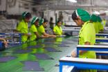 Sri Lanka's garment sector workers are already being trained in lean management, green and eco- friendly manufacturing technologies, and how to comply with high health and safety standards