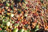 UK food industry commits to halving food waste