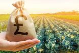 Carbon emissions and fiscal measures – a taxing problem for UK food