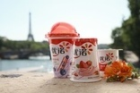 BRICs and beyond: Has Yoplait adopted the best expansion strategy in China?